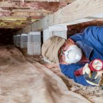 5 Things You Need to Know About Termite Moisture Inspections